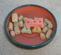 Lab Blocks and Dog Biscuits